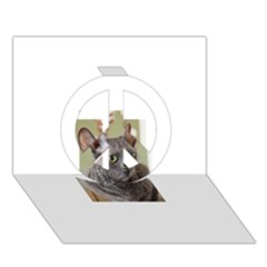 Cornish Rex, Blue Peace Sign 3D Greeting Card (7x5)