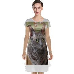 Cornish Rex, Blue Cap Sleeve Nightdress