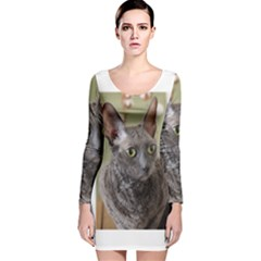 Cornish Rex, Blue Long Sleeve Velvet Bodycon Dress