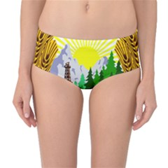 National Emblem Of Romania, 1965 1989  Mid Waist Bikini Bottoms
