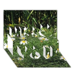 Wild Daisy Summer Flowers Miss You 3d Greeting Card (7x5)