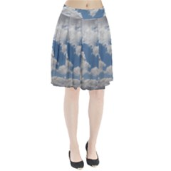 Breezy Clouds In The Sky Pleated Skirt