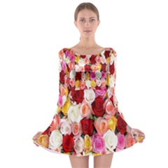 Rose Color Beautiful Flowers Long Sleeve Skater Dress