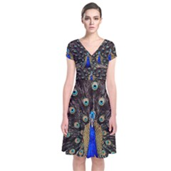 Peacock Short Sleeve Front Wrap Dress