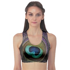 Peacock Feather Sports Bra