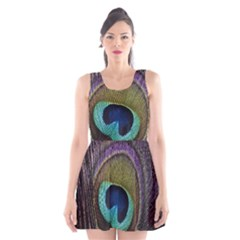 Peacock Feather Scoop Neck Skater Dress