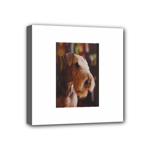 Airedale Terrier Mini Canvas 4  x 4