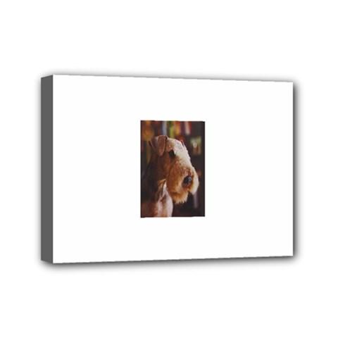 Airedale Terrier Mini Canvas 7  x 5