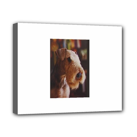 Airedale Terrier Canvas 10  x 8