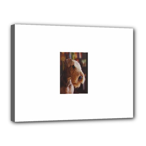 Airedale Terrier Canvas 16  x 12