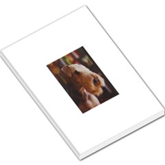 Airedale Terrier Large Memo Pads