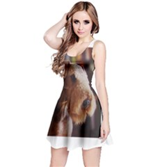 Airedale Terrier Reversible Sleeveless Dress