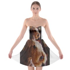 Airedale Terrier Strapless Bra Top Dress