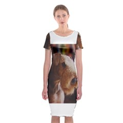 Airedale Terrier Classic Short Sleeve Midi Dress