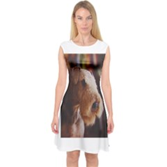 Airedale Terrier Capsleeve Midi Dress