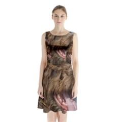 Gwp Sleeveless Chiffon Waist Tie Dress