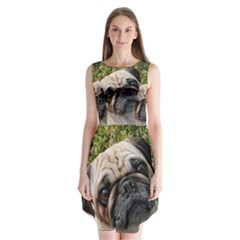 Pug Fawn Sleeveless Chiffon Dress