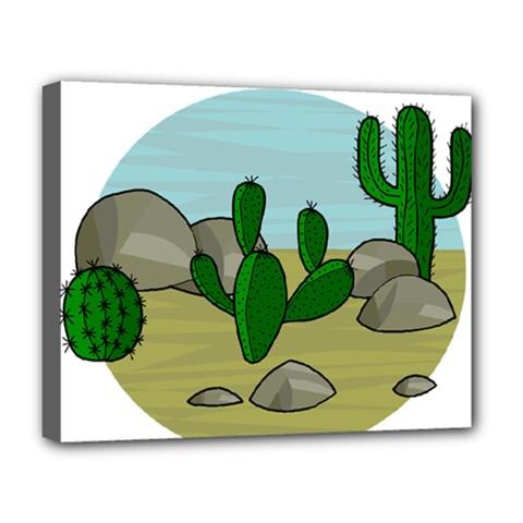 Desert Deluxe Canvas 20  x 16