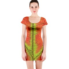 Nature Leaves Short Sleeve Bodycon Dress