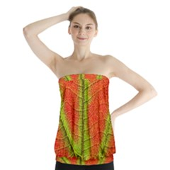 Nature Leaves Strapless Top