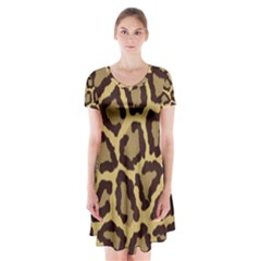 Leopard Short Sleeve V-neck Flare Dress