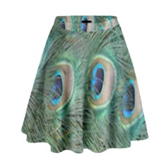 Peacock Feathers Macro High Waist Skirt