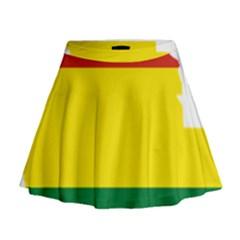 Flag Map Of Bolivia Mini Flare Skirt