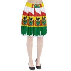 Flag Map Of Bolivia  Pleated Skirt