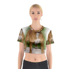 Staffordshire Bull Terrier Full Cotton Crop Top