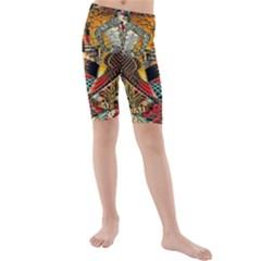Hail Fine Art Print Kids  Mid Length Swim Shorts