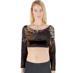 Fractalius Abstract Forests Fractal Fractals Long Sleeve Crop Top