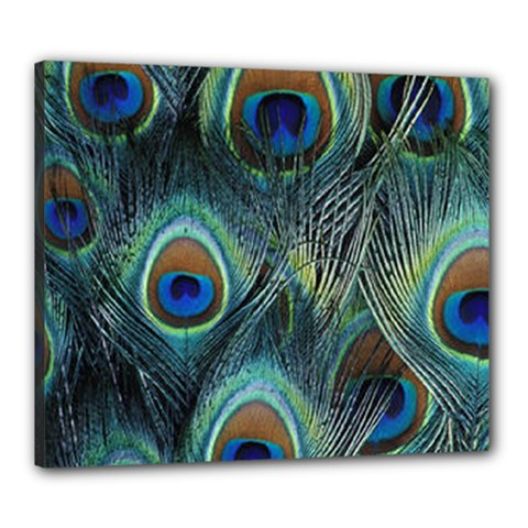 Feathers Art Peacock Sheets Patterns Canvas 24  x 20