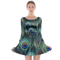 Feathers Art Peacock Sheets Patterns Long Sleeve Skater Dress