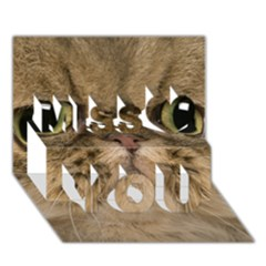 Cute Persian Cat,face In Closeup Miss You 3D Greeting Card (7x5)