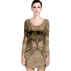 Cute Persian Cat,face In Closeup Long Sleeve Velvet Bodycon Dress