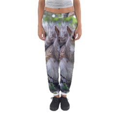 Gray Squirrel Eating Sycamore Seed Women s Jogger Sweatpants