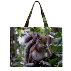 Gray Squirrel Eating Sycamore Seed Medium Tote Bag