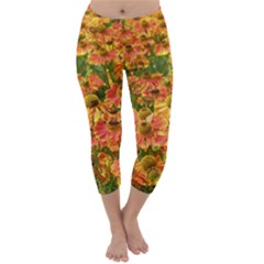 Helenium Flowers and Bees Capri Winter Leggings