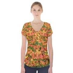 Helenium Flowers and Bees Short Sleeve Front Detail Top