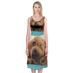 Red English Cocker Spaniel 2 Midi Sleeveless Dress