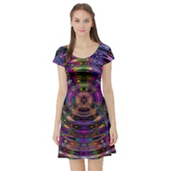 Color In The Round Short Sleeve Skater Dress