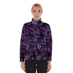 Bird Color Purple Passion Peacock Beautiful Winterwear