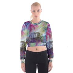 Bench In Spring Forest Women s Cropped Sweatshirt