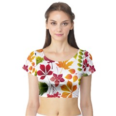 Beautiful Autumn Leaves Vector Short Sleeve Crop Top (Tight Fit)