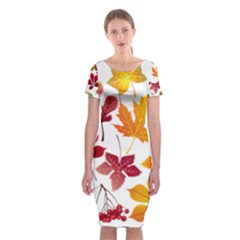 Beautiful Autumn Leaves Vector Classic Short Sleeve Midi Dress