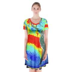 Earth Short Sleeve V-neck Flare Dress