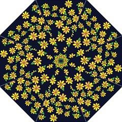 Daisy Flower Pattern For Summer Hook Handle Umbrellas (medium)