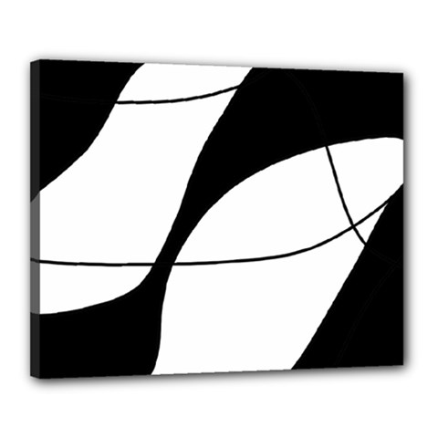 White and black shadow Canvas 20  x 16