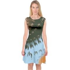 Sunraypil Capsleeve Midi Dress
