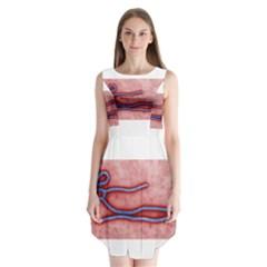 Ebola Sleeveless Chiffon Dress